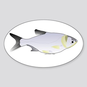 Silver Carp (Asian Carp) fish Sticker