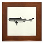 Megamouth Shark Framed Tile