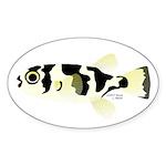 Amazon Puffer Sticker (Oval 10 pk)