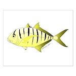 Yellow Trevally (aka Yellow Jack) fish Posters