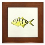 Yellow Trevally (aka Yellow Jack) fish Framed Tile