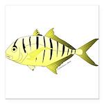 Yellow Trevally (aka Yellow Jack) fish Square Car
