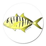 Yellow Trevally (aka Yellow Jack) fish Round Car M