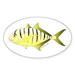 Yellow Trevally (aka Yellow Jack) fish Sticker
