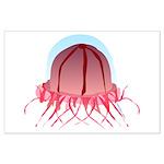 Deep Sea Jellyfish (Crossota) Posters