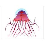 Deep Sea Jellyfish (Crossota Chillipeper) Posters