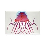 Deep Sea Jellyfish (Crossota Chillipeper) Rectangl