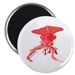 Colossal Squid (Annas Antarctica) Magnet