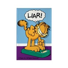 LIAR! Rectangle Magnet (100 pack)