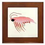 Pink Krill Framed Tile