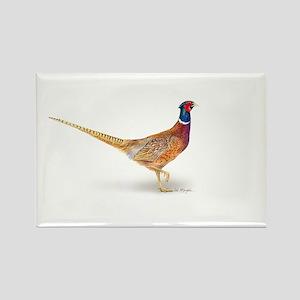 pheasant Rectangle Magnet