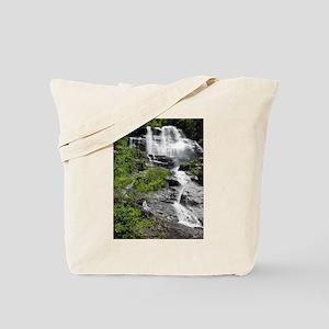 Amicalola Falls in Georgia Tote Bag
