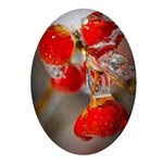 Viburnum Berries Covered with Ice Oval Ornament