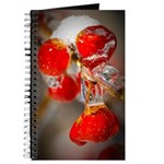 Viburnum Berries Covered with Ice Journal
