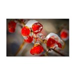 Viburnum Berries Covered with Ice 20x12 Wall Decal