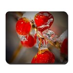Viburnum Berries Covered with Ice Mousepad
