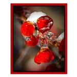 Viburnum Berries Covered with Ice Small Poster