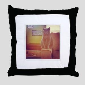 Lone Cat Throw Pillow