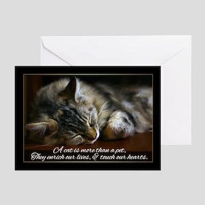 Pet Cat Sympathy Card, Loss Of Pet (Pk of 20)