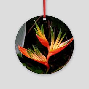 Bird of Paradise Ornament (Round)