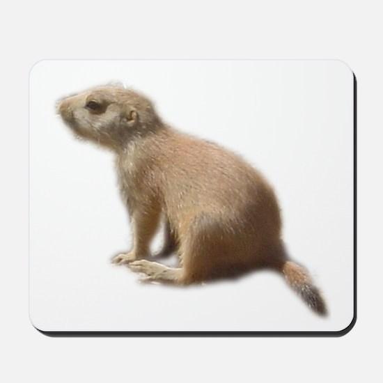 prairie dog pup Mousepad
