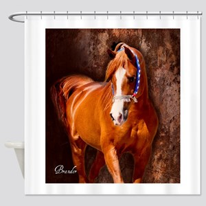 Copper Chestnut Arabian Stallion Shower Curtain