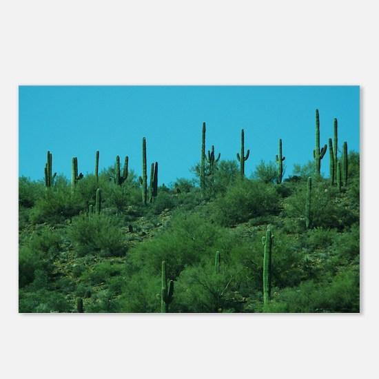 Cute Cactus Postcards (Package of 8)