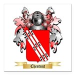 Chestnut Square Car Magnet 3