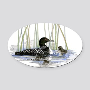 Loon and baby Oval Car Magnet