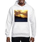 The heavens declare... Hooded Sweatshirt