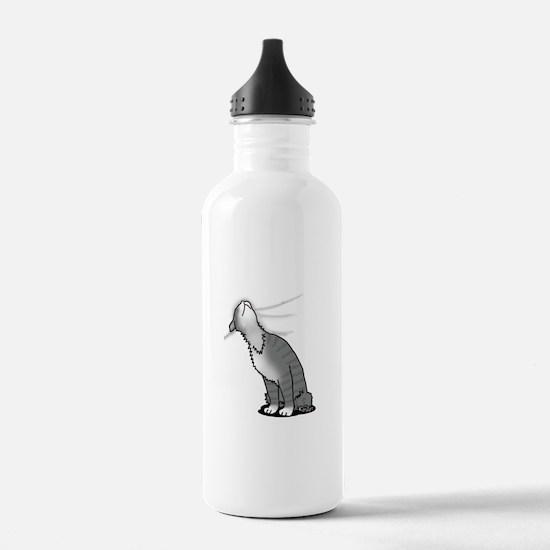 Kitty Love Water Bottle