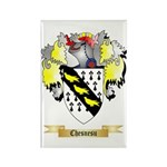 Chesnesu Rectangle Magnet (100 pack)