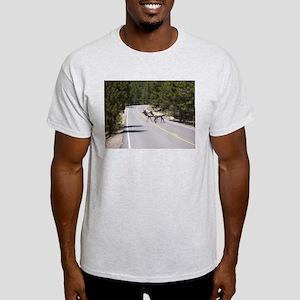 Elk in the Road - Estes Park, Colorado T-Shirt