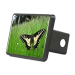 Anise Swallowtail Butterfly Rectangular Hitch Cove