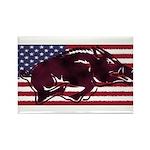 Ameri-hog Rectangle Magnet (100 pack)