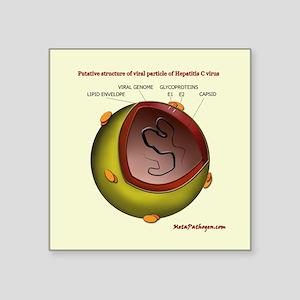 Putative HCV particle structure Sticker