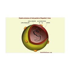 Putative HCV particle structure Wall Decal