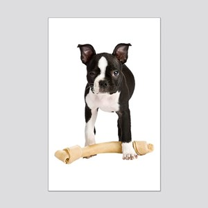 Boston Terrier Standing Guard Mini Poster Print