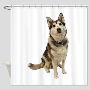 Alaskan Husky Shower Curtain