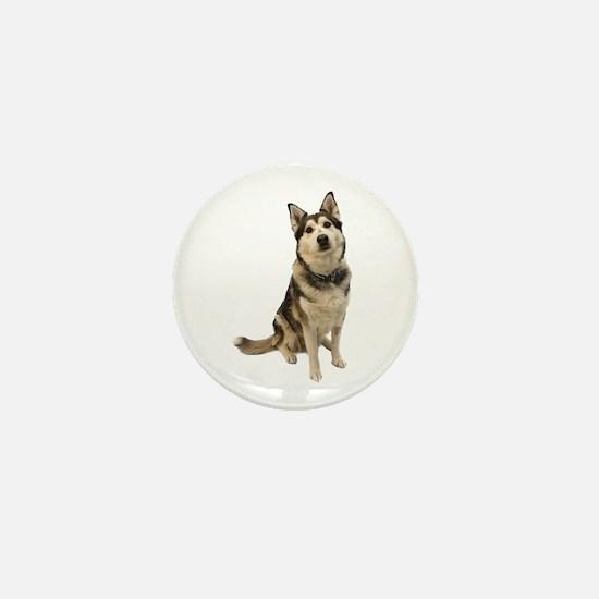 Alaskan Husky Mini Button