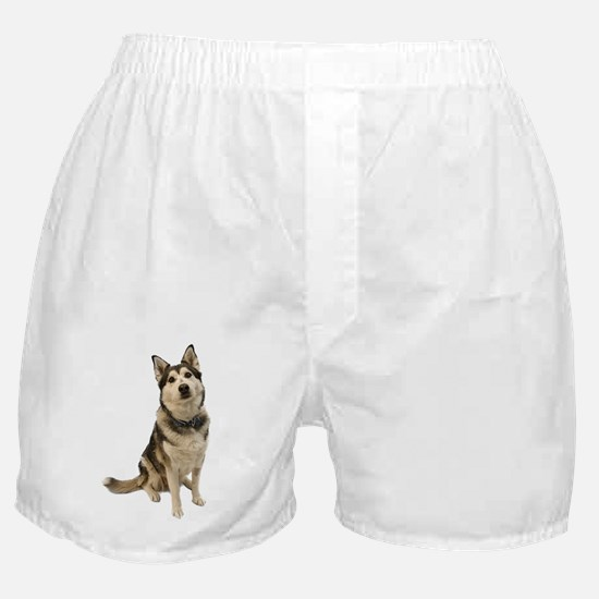 Alaskan Husky Boxer Shorts