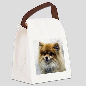 Pomeranian Cutie Canvas Lunch Bag