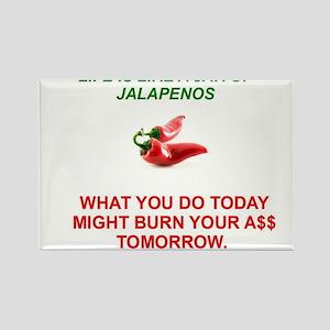 Jalapeno Humorous Rectangle Magnet