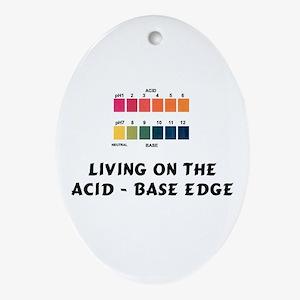 Acid - Base Oval Ornament