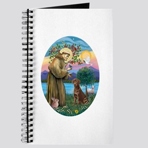 StFrancis-Choc Lab Journal