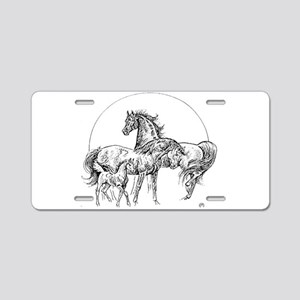 Logo Aluminum License Plate