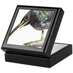 Green Heron Keepsake Box