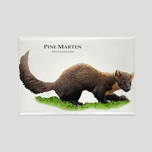 Pine Marten Rectangle Magnet