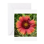 Firewheel on Fire Greeting Cards (Pk of 10)