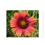 Firewheel on Fire Postcards (Package of 8)